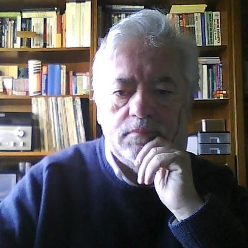 Professor Doutor Rui Brites
